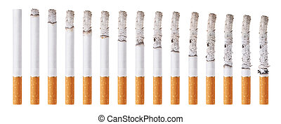 Cigarettes during different stages of burn. Isolated on ...