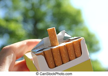 cigarettes in the park