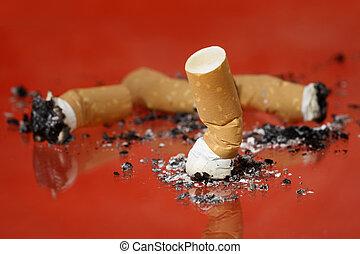 Cigarrette butts - Cigarrette stubs on glass