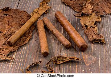 cigarros, y, tabaco, hojas