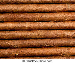 Cigars in a row close-up