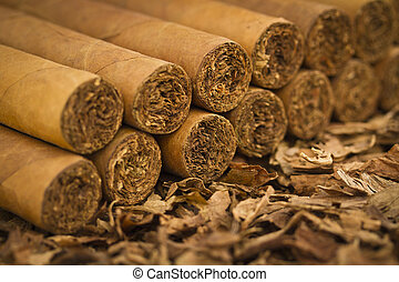 Cigars on Tobacco - A macro shot of cigars on tobacco. These...