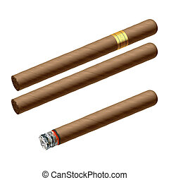 Cigars - Vector illustration of a luxury cigars
