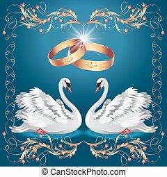 cigni, anelli, due, scheda, matrimonio