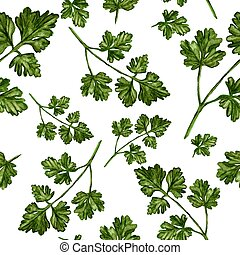 Cilantro - Hand Painted Watercolour - Asian herbs - hand...