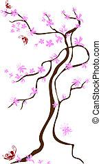 ciliegia, farfalle, orientale