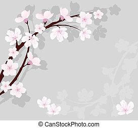 ciliegia, vettore, ramo