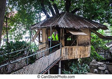 cima albero, casa