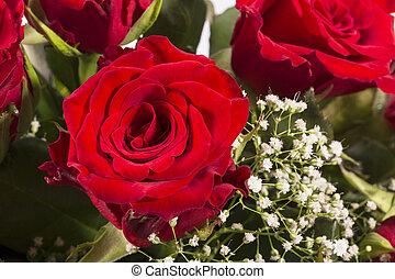 cima., buquet, rosas, fim, vermelho