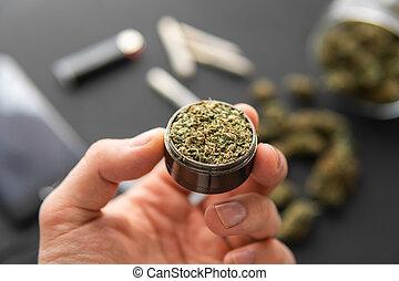 cima, erva daninha, conjunto, moedor, cannabis, mão, marijuana, brotos, fim, fresco