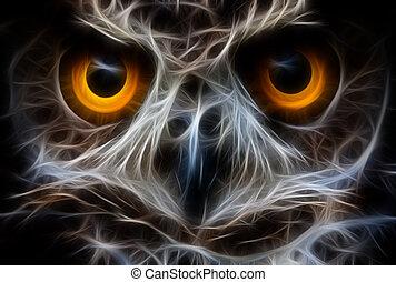cima fim, rosto, pássaro, coruja