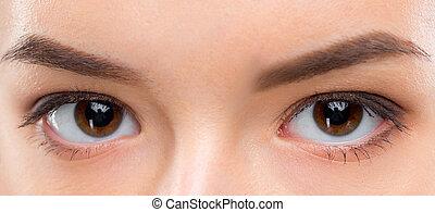 cima, imagem, de, femininas, olhos marrons