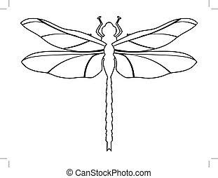cima, libellula, vista