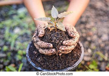 cima, mão, de, crianças, segurando, planta, e, solo
