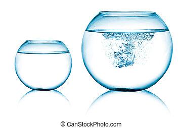 cima, vista, de, dois, peixe, tigelas, branco, fundo