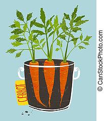 cima, zanahorias, jarra, verde, crecer, frondoso
