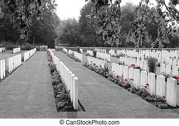 cimetière, flandre, belgique, guerre mondiale, premier