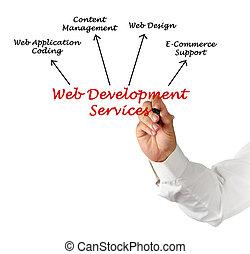 cinche desarrollo, servicio