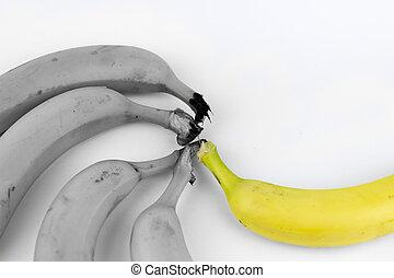 cinco, bananas, ligado, um, fundo branco
