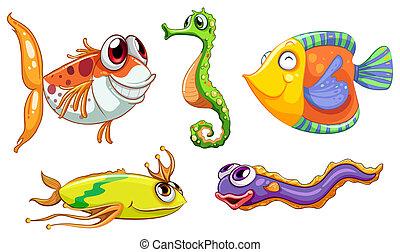 cinco, criaturas mar