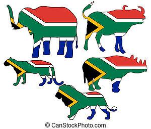cinco, grande, áfrica, sul