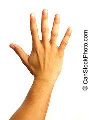 cinco, mão