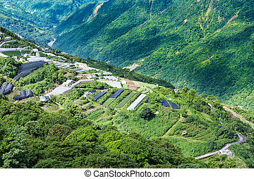 Cingjing farm at Taiwan