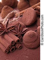cinnamon and chocolate truffe