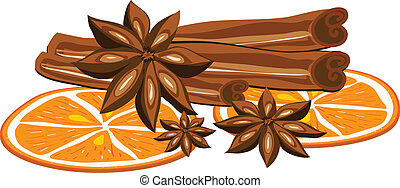 Cinnamon, anise and orange on a white background. Vector...