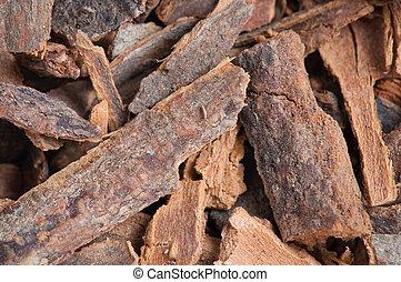 split cinnamon tree bark, texture background, close up