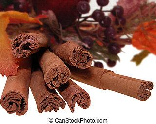 Cinnamon Bundle - Bundle of cinnamon sticks surrounded by ...