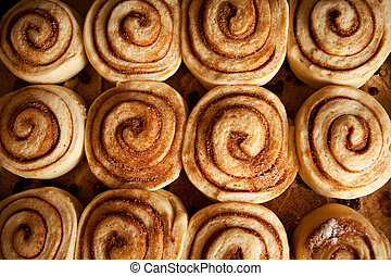 Cinnamon Buns - A pan of uncooked cinnamon buns ready for...