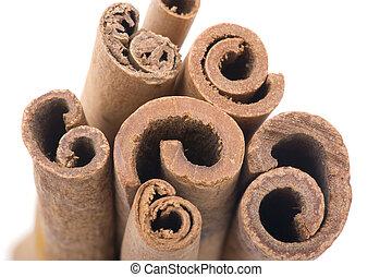 cinnamon macro - object on white - food cinnamon close up
