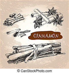 Cinnamon. Set of hand drawn graphic illustration