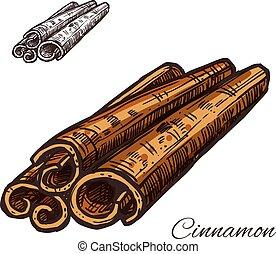 Cinnamon spice vector sketch plant bark icon
