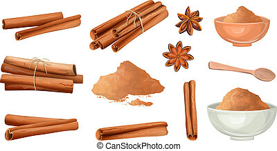 Cinnamon stick and powder set. Natural spicy ingredient for food. Isolated vector illustration