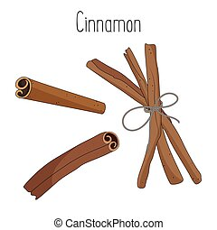 Cinnamon sticks isolated on white background, vector illustration.