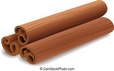 Cinnamon sticks isolated on white background. Vector...