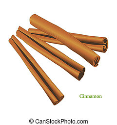 Cinnamon Sticks Spice - Cinnamon, classic spice from the...