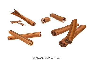 Cinnamon Sticks Vector Set. Cinnamon Barks in Different ...