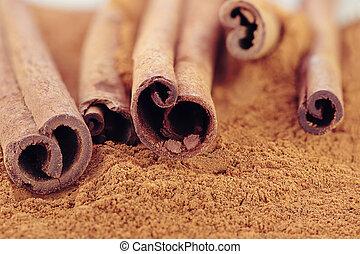 Cinnamon bark and ground cinnamon. Selective focus with...