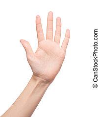 cinq, dénombrement, -, doigts