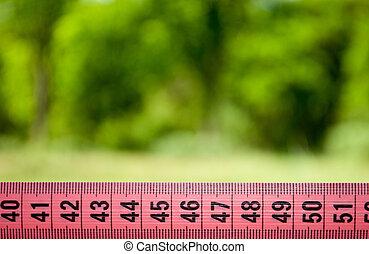 cinta medición, pierda el peso, dieta, vista trasera, pasto o césped, arbusto, árbol, fondo velado, grasa, deporte