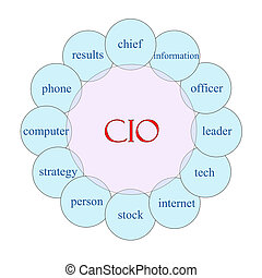 CIO concept circular diagram in pink and blue with great terms such as chief, informatin, officer and more.