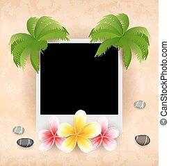 ciottoli, cornice foto, frangipani, mare, palma, fiori, vuoto