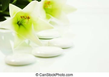 ciottoli, e, fiori, (spa, concept)