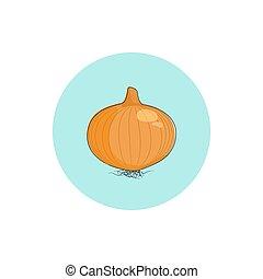 cipolla, vettore, illustrazione, icona