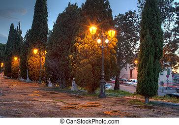 ciprusfa