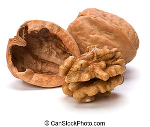 walnut - Circassian walnut isolated on white background
