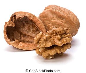 Circassian walnut isolated on white background